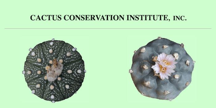 Cactus Conservation Institute